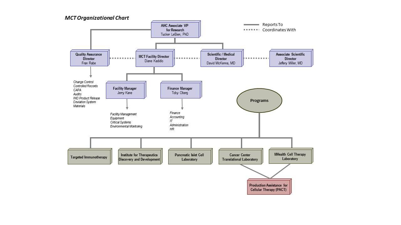 Molecular & Cellular Therapeutics Org Chart